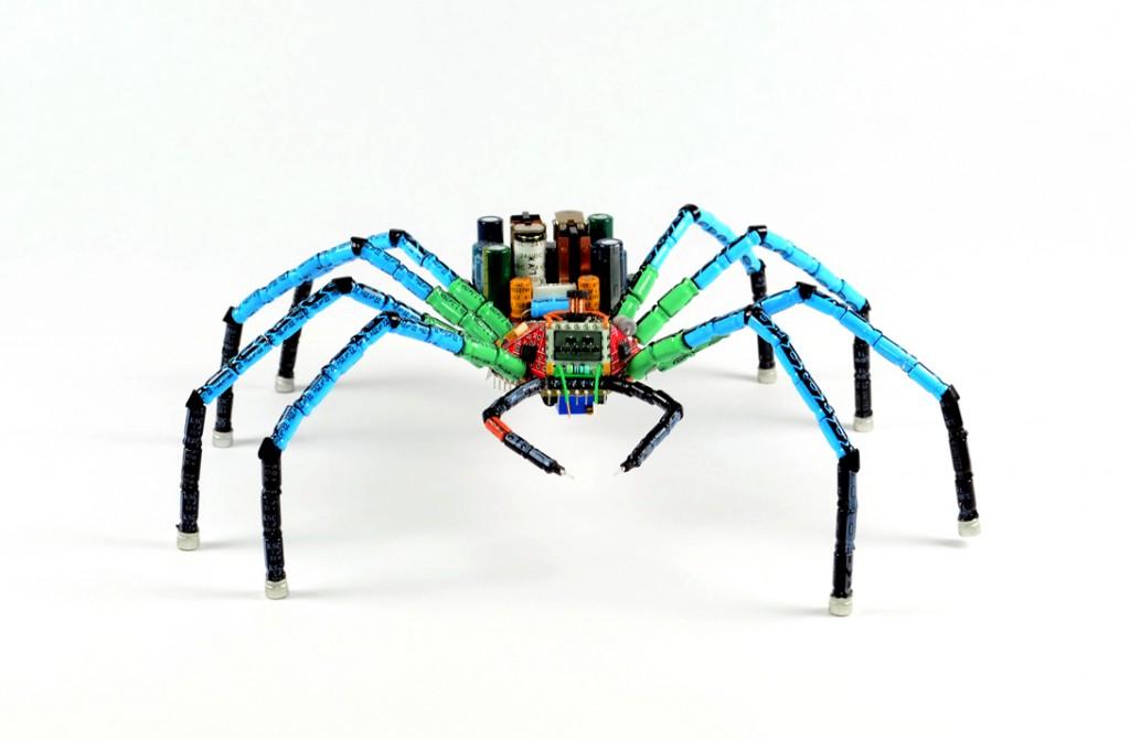 data-spider